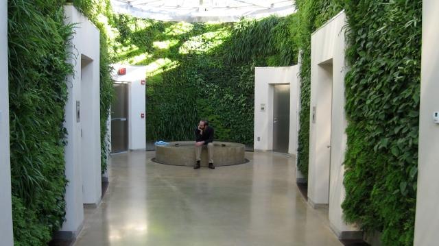 The Green Wall, Longwood Gardens