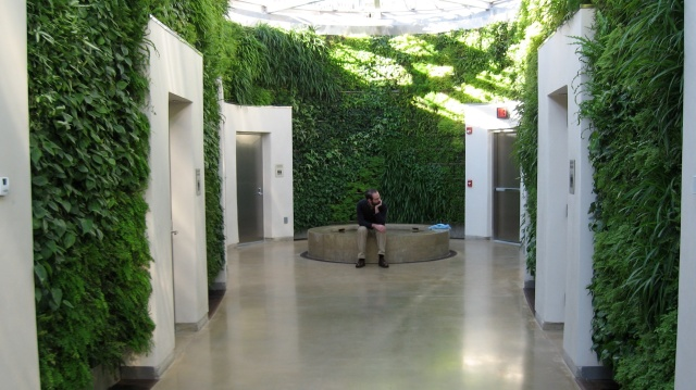 The Green Wall, Longwood Gardens